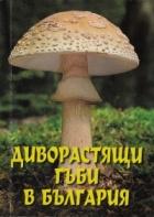 Диворастящи гъби в България
